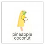 sugarfree pineapple coconut